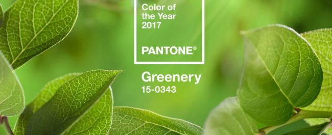Greenery, color of the year, inspire your inner interior decorator, incorporate this color into your lifestyle, walk-in closet, pantry, mud room...